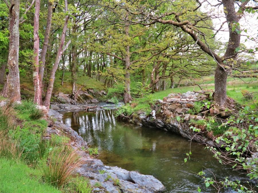 Hier sollte eine Brücke über Newlands Beck sein.
