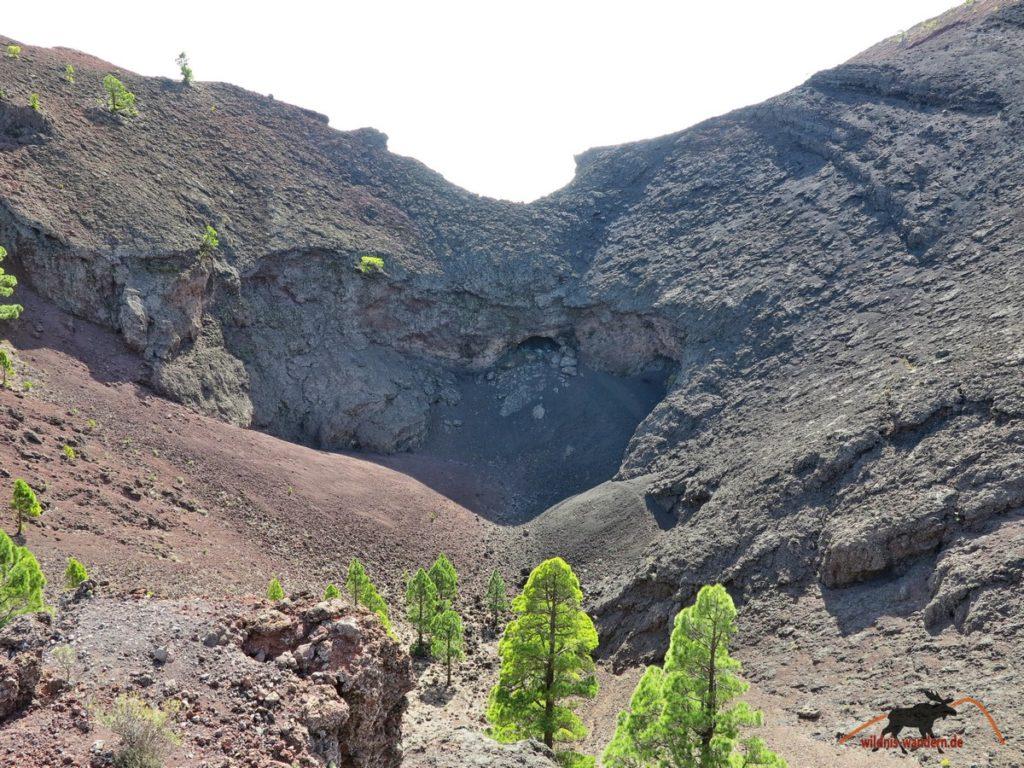 Vulkan Martin