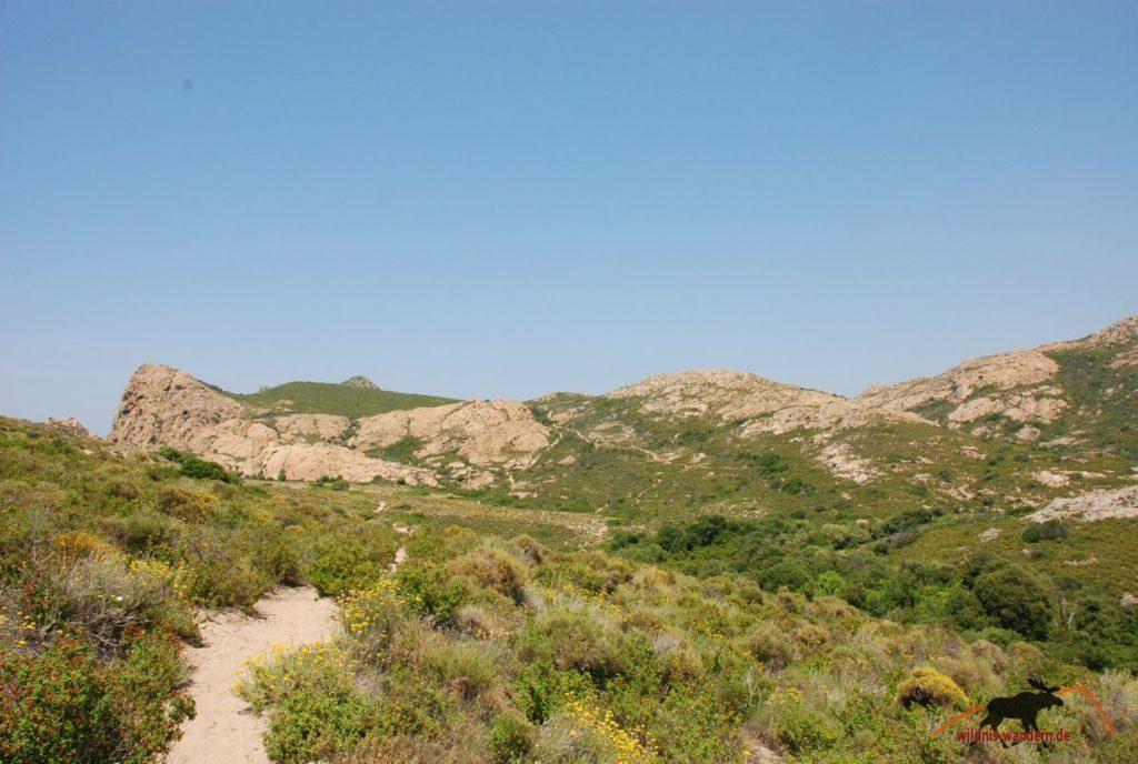 Agriates-Wüste