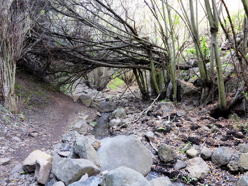 Barranco Cernicalos