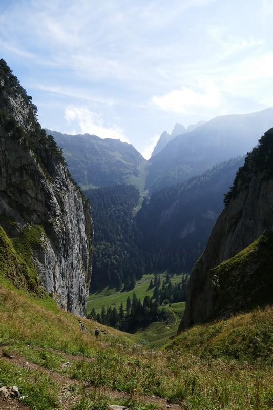 Alp Sigel