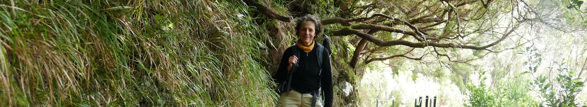 Rabaçal: Risco-Wasserfall und 25-Fontes