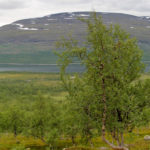 Grenzpfad von Troms - Etappe 11
