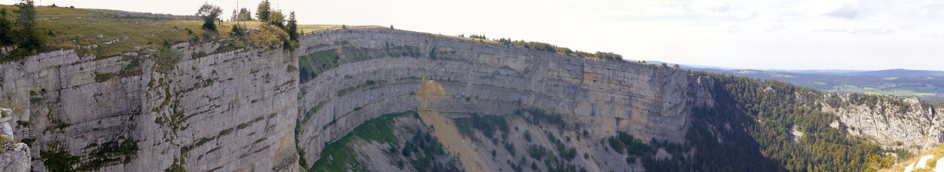 Die Bäume auf dem Jura-Höhenweg