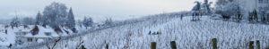 Winterwunderland-Konstanz