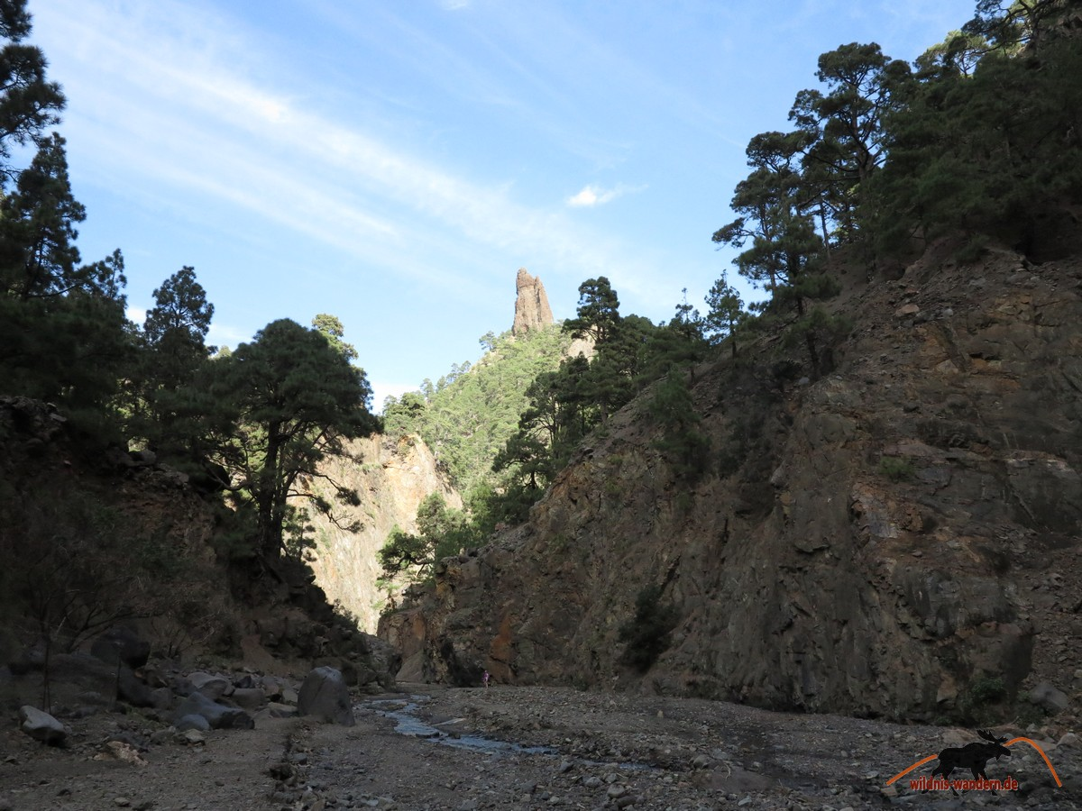 Zurück im Barranco de las Angustias - der Rückweg beginnt
