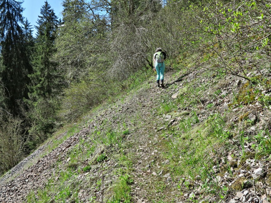 An der Bahnlinie Neustadt-Donaueschingen