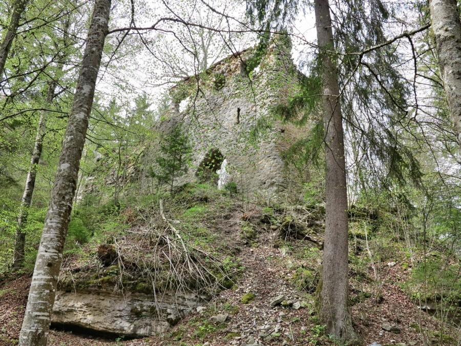 Burg Boll